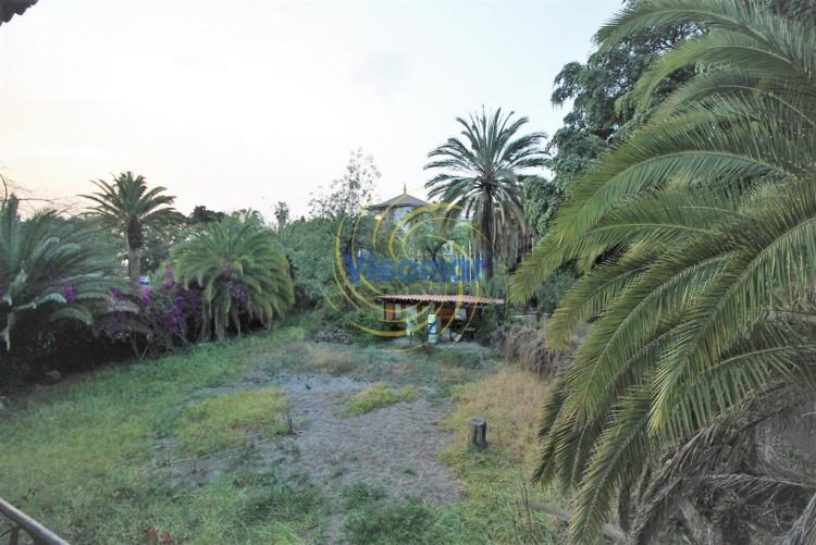 Carretera Tahoro -  Puerto de la Cruz -